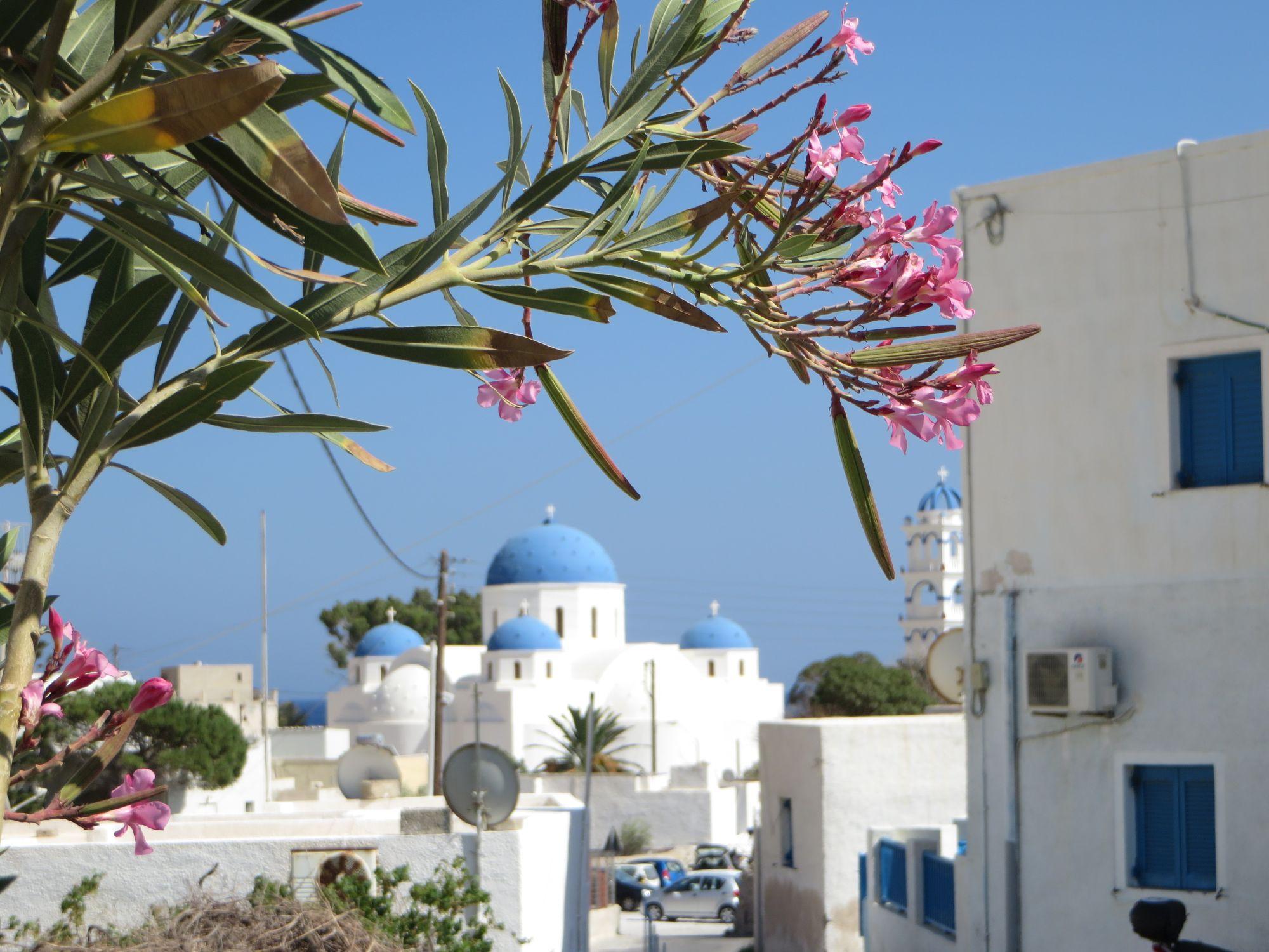 Une de ces fameuses églises au toit bleu à Santorini