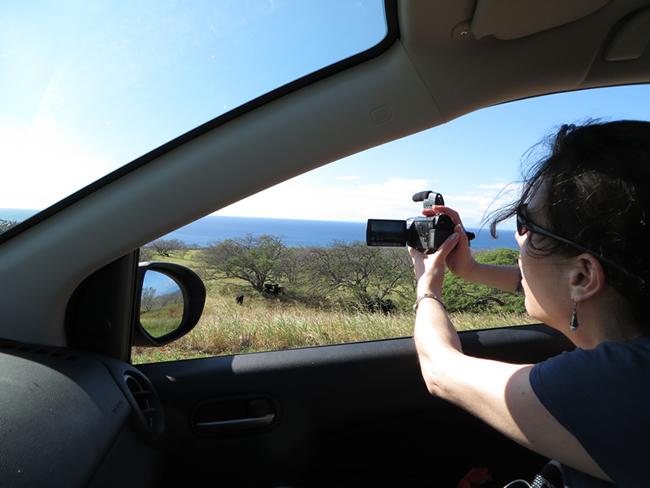 Hawaï sous l'oeil de notre caméra