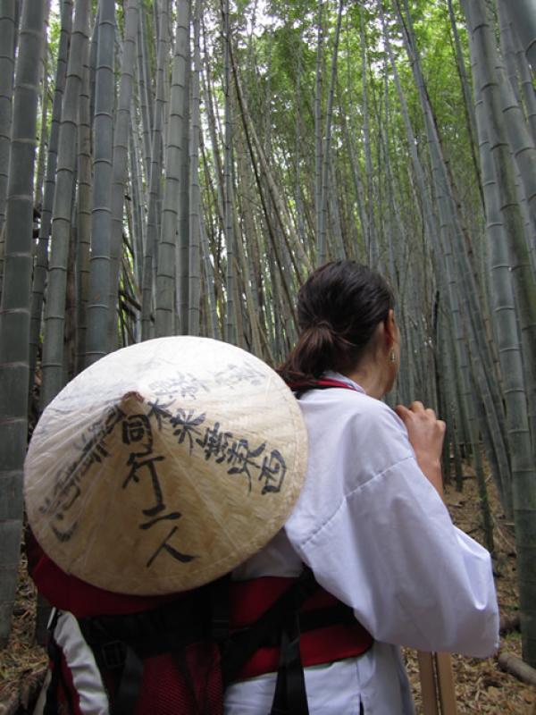 Forêt de Bamboo