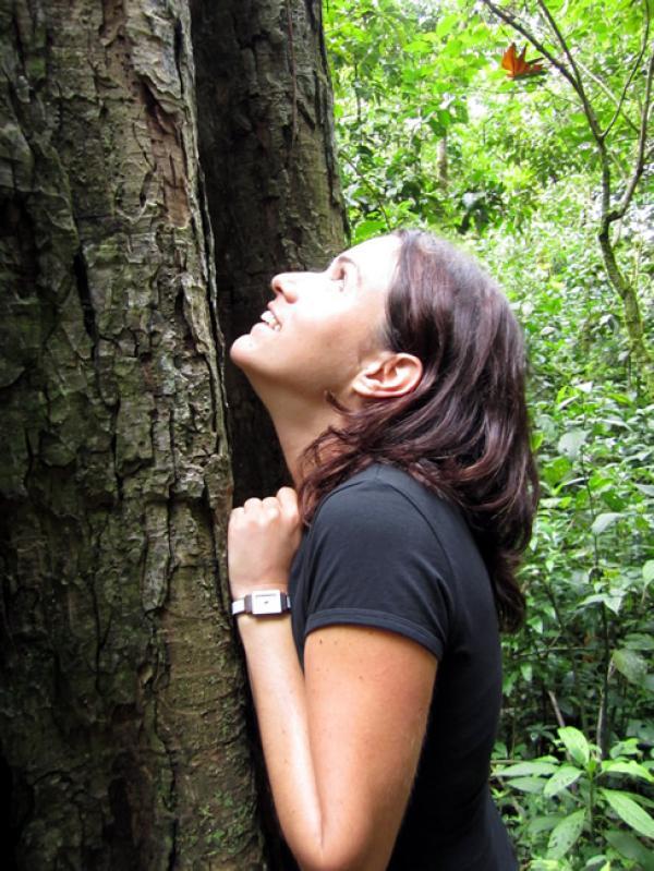 L'énergie des arbres grandioses