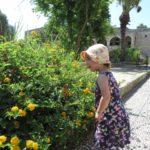 Marianne-fleurs